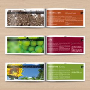Brochure Di-Vinum