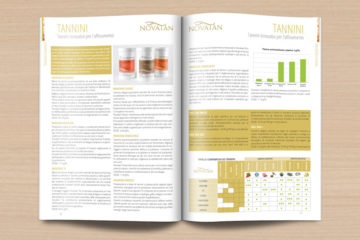 Brochure Enobiotech