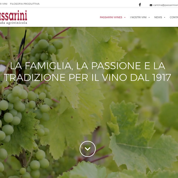 Sito web Passarini Wines